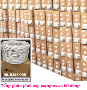 cap-mang-amp-cat-5e-ma-6-219590-2-chinh-hang1