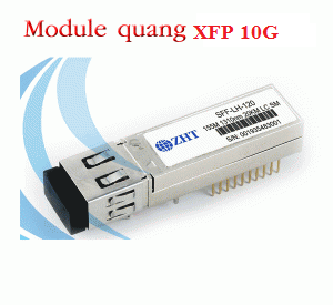 Module quang XFP 10G, Up to 11.1Gbps