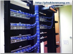 patch-panel-and-switch