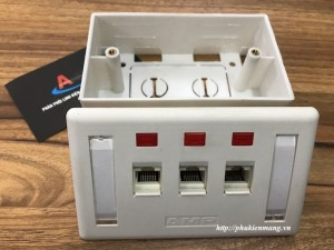 bo-wallplate-3-port-amp (1)